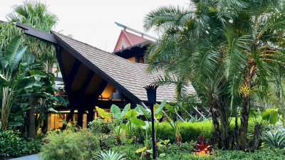 Disney's Polynesian Standard View Studio – A DVC Duo Room Review